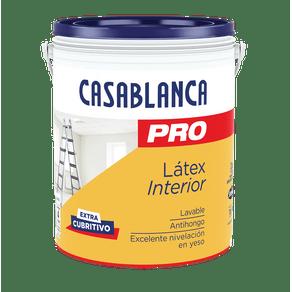 pro-latex-casablanca