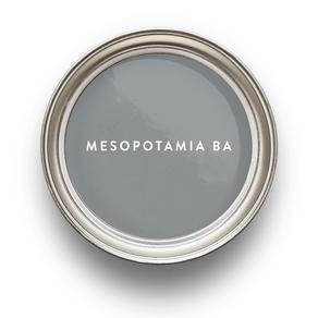 gris-litoral-mesopotamia