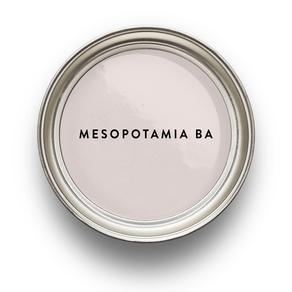 rosa-japon-mesopotamia